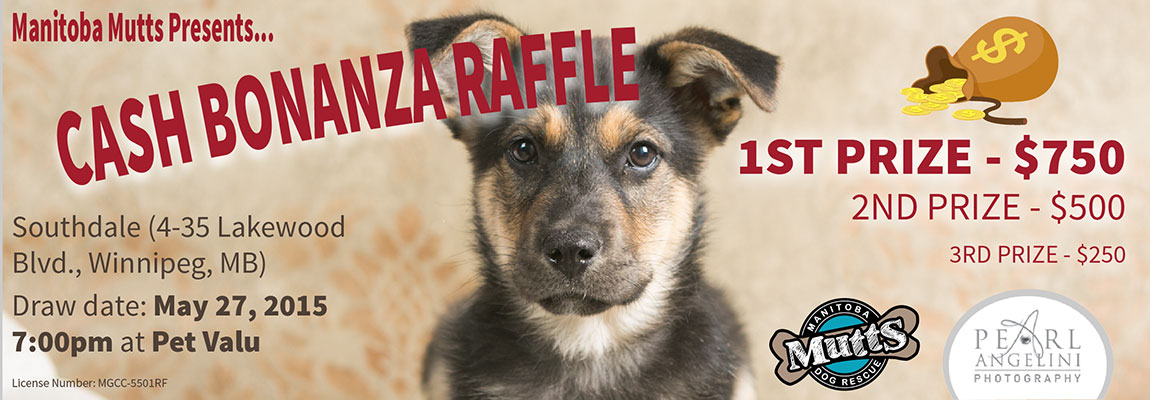 Mutts-Raffle-Banner