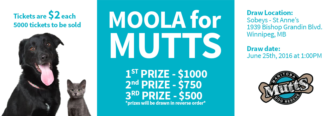 moola_for_mutts_raffle